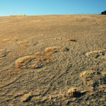 Dinosaur Footprints - Serra de Aire